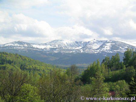ośnieżone szczyty Karkonoszy